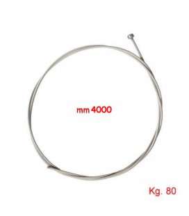 CAVO INOX TESEO mm2x4000