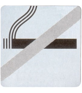 PICTOGRAM NO SMOKE STAINLESS