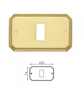 COVER SWITCH 8014/B OLV