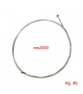 CAVO INOX TESEO mm2x2000
