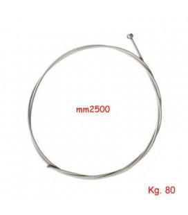 CAVO INOX TESEO mm2x2500